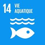 ODD 14 vie aquatique
